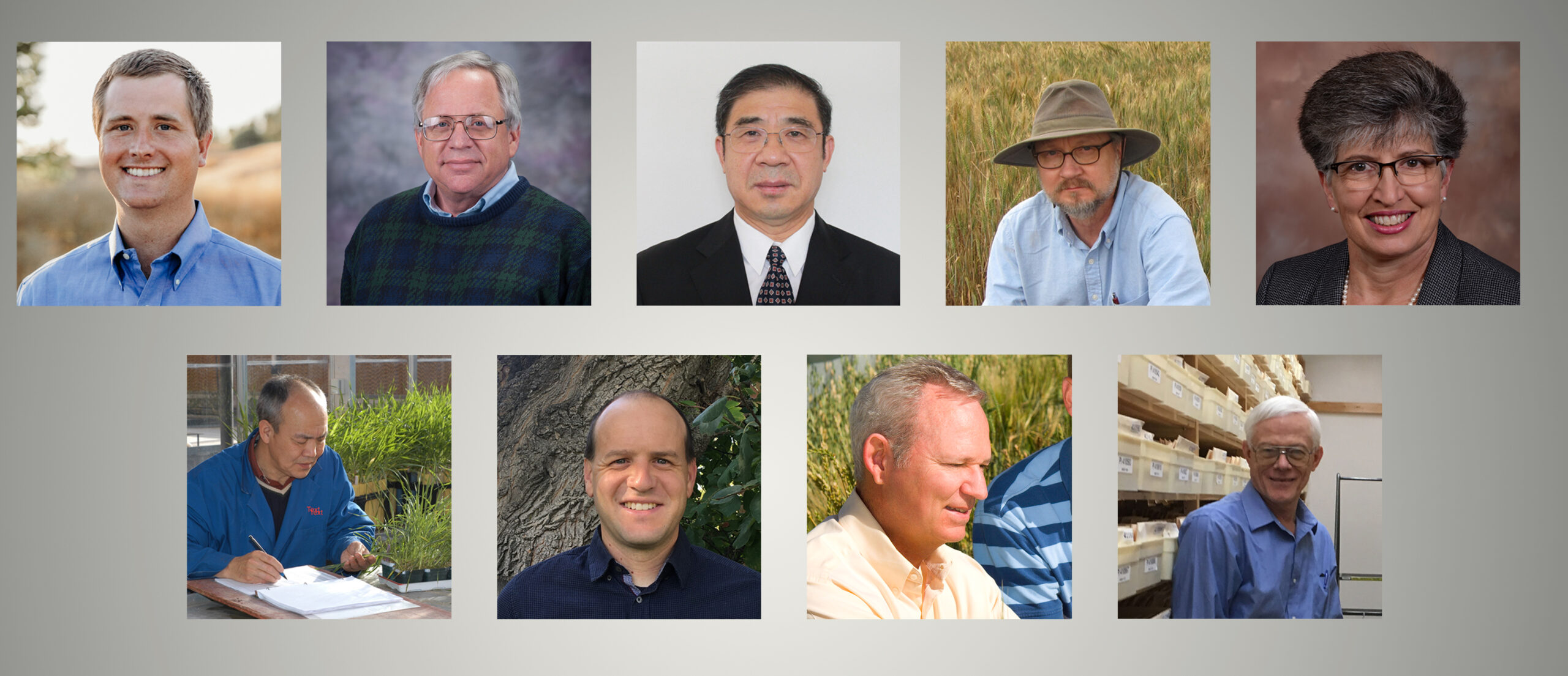 USDA-ARS wins 2020 Gene Stewarship award