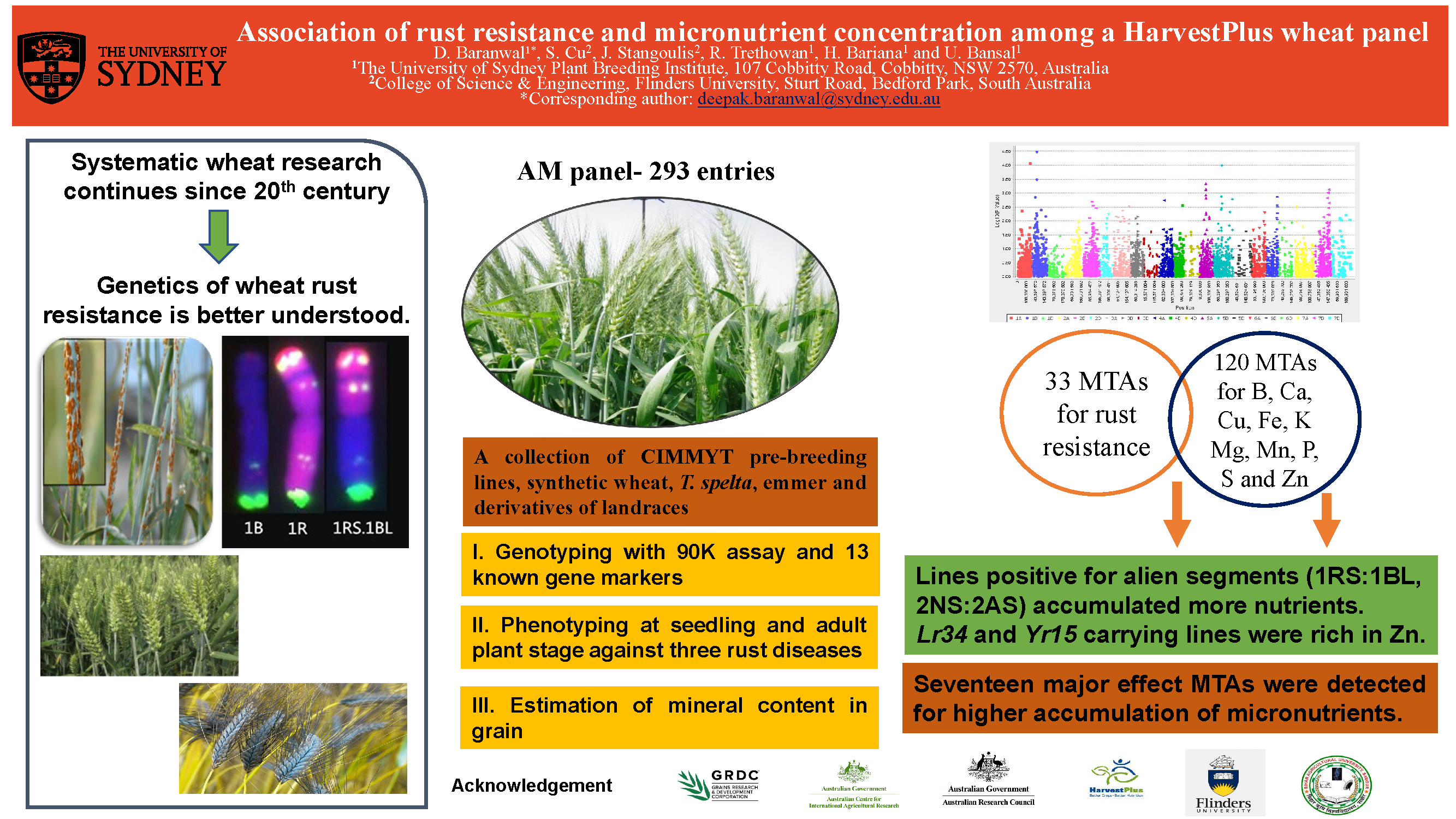 Assessment of genetic diversity for rust resistance and micronutrient concentration among a Harvest Plus Association Mapping panel through genome-wide association analyses