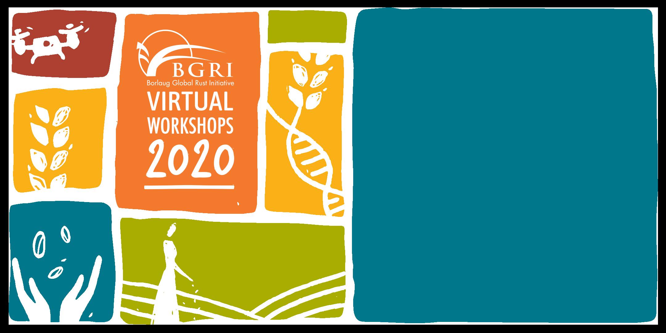 BGRI 2020